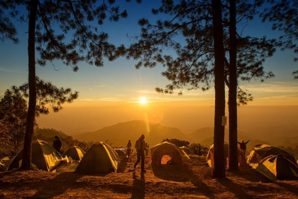 How to camp for beginners, camping